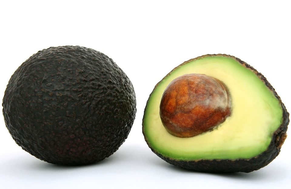 Aguacate: Productos de Mundifruit