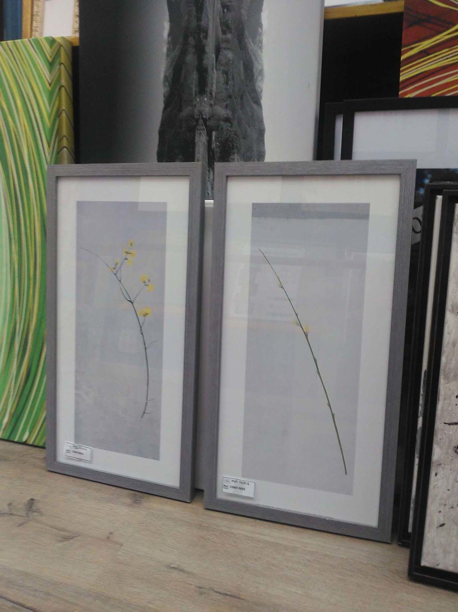 Foto 5 de Cuadros y marcos en  | 4 INGLETES BRAVO MURILLO