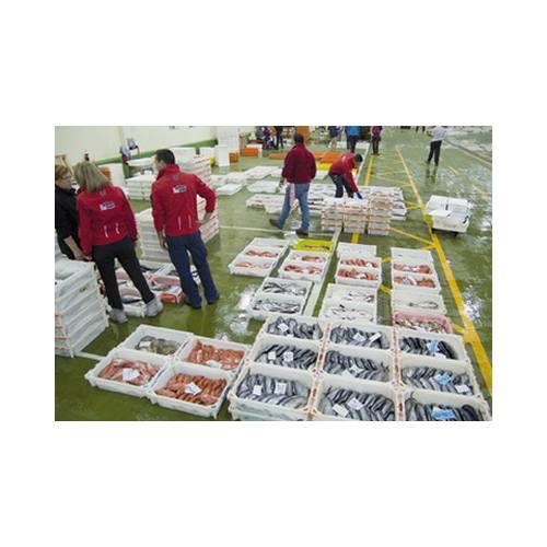 Subasta: Productos y Servicios de Peixes Vimar