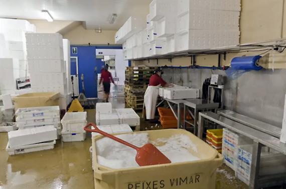 Estamos situados en el puerto de Vigo