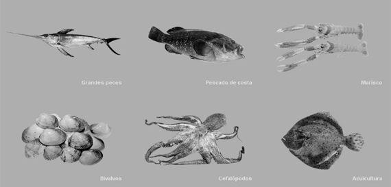 Especializado en pescado de costa, grandes peces y mariscos.