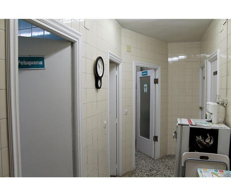Centro veterinario con peluquería
