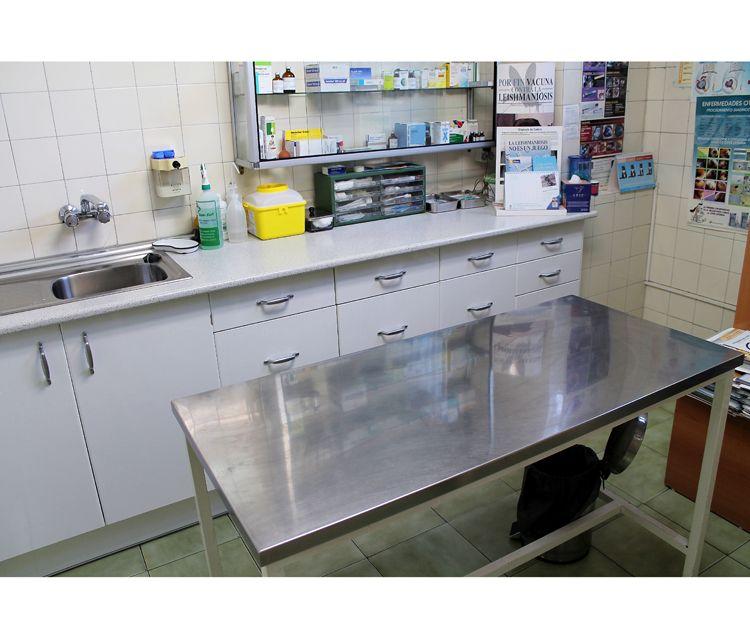 Centro veterinario Aluche Madrid