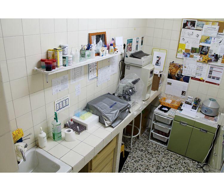 Centro veterinario en Carabanchel