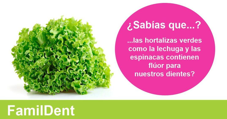 Foto 12 de Clínicas dentales en Valencia | Centro de Salud Dental FamilDent