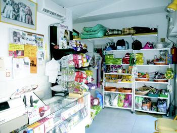 Foto 1 de Veterinarios en Galapagar | Clínica Veterinaria Galapagar