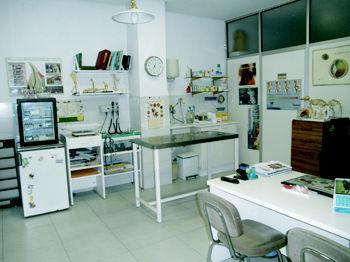 Foto 6 de Veterinarios en Galapagar | Clínica Veterinaria Galapagar