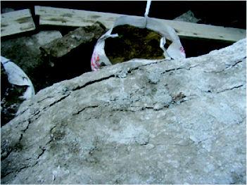 Foto 4 de Cemento expansivo demoledor en  | Kayati
