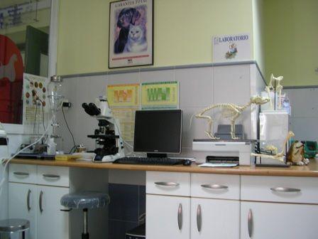 Clínica Veterinaria San Antonio \u002D Àvila