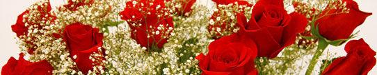 Foto 5 de Floristerías en Ordes | Flores Abellá