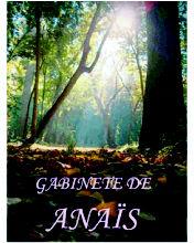 Foto 2 de Astrología y Esoterismo en Sant Boi de Llobregat | Gabinete de Anaïs
