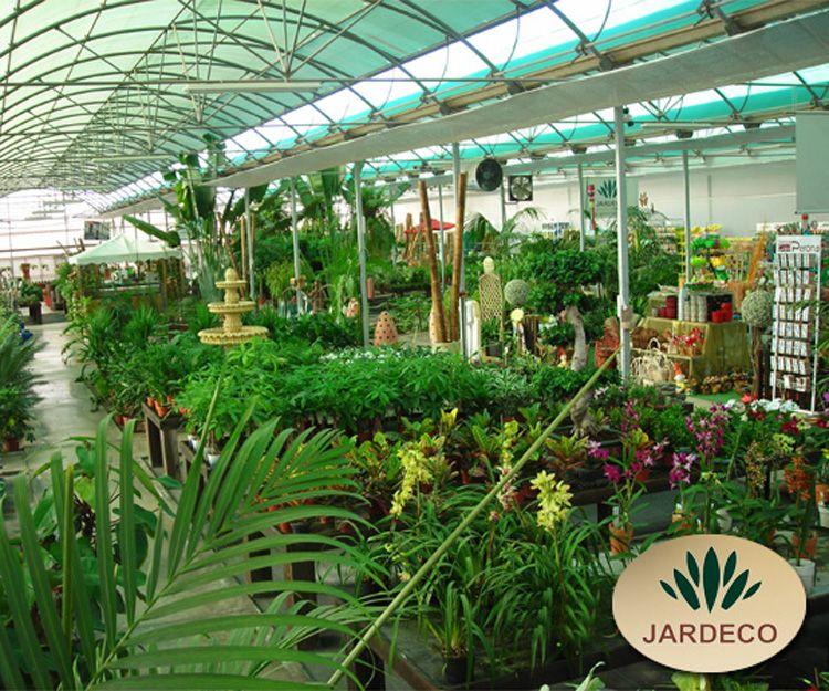 Empresa de diseño de jardines en Tenerife
