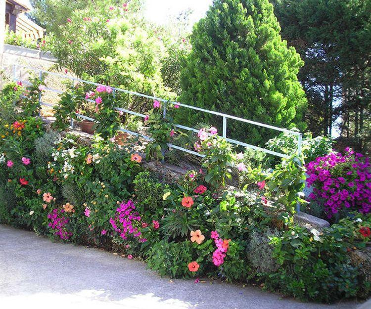 Proyecto y diseño de jardines en Tenerife