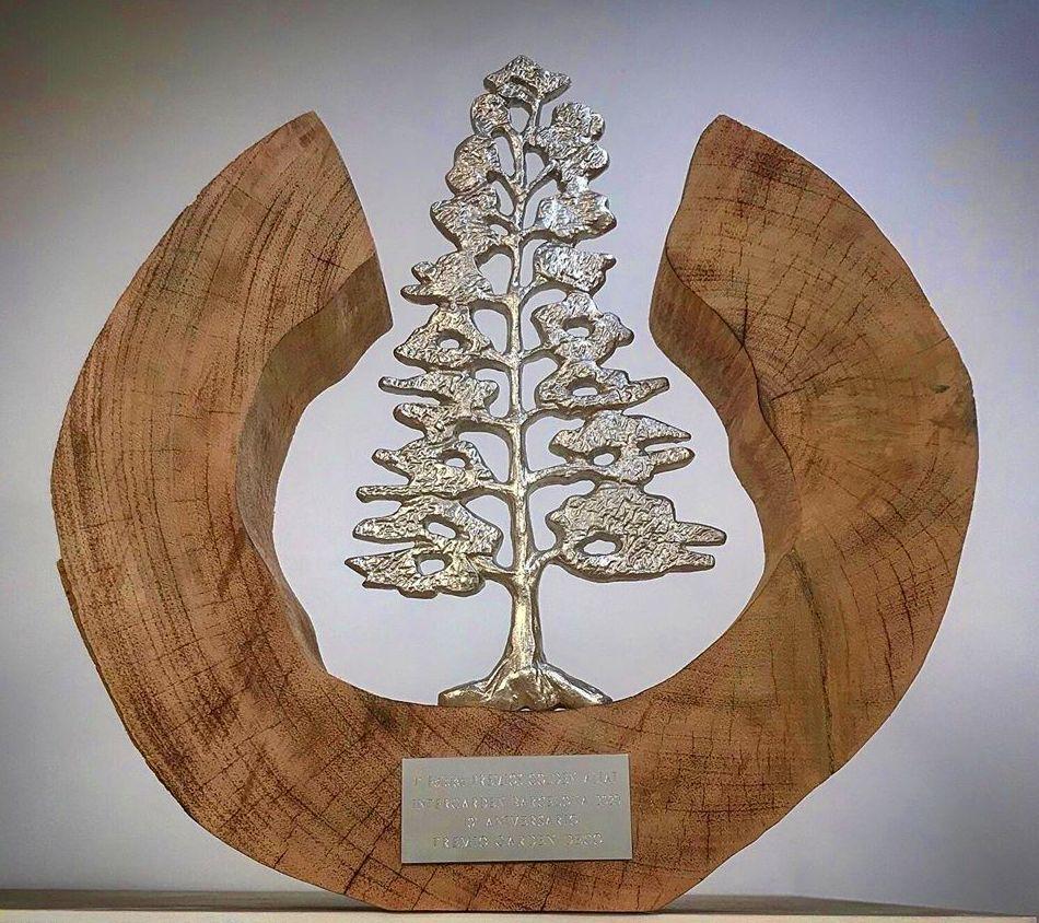 Premio Golden Aliat al Garden Center con la Mejor Decoración de España 2020 en Tenerife