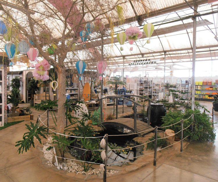 Instalaciones del centro de jardinería en Tenerife