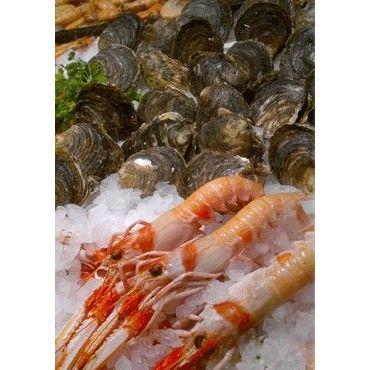 Marisco: Productos de Pescadería Aparicio