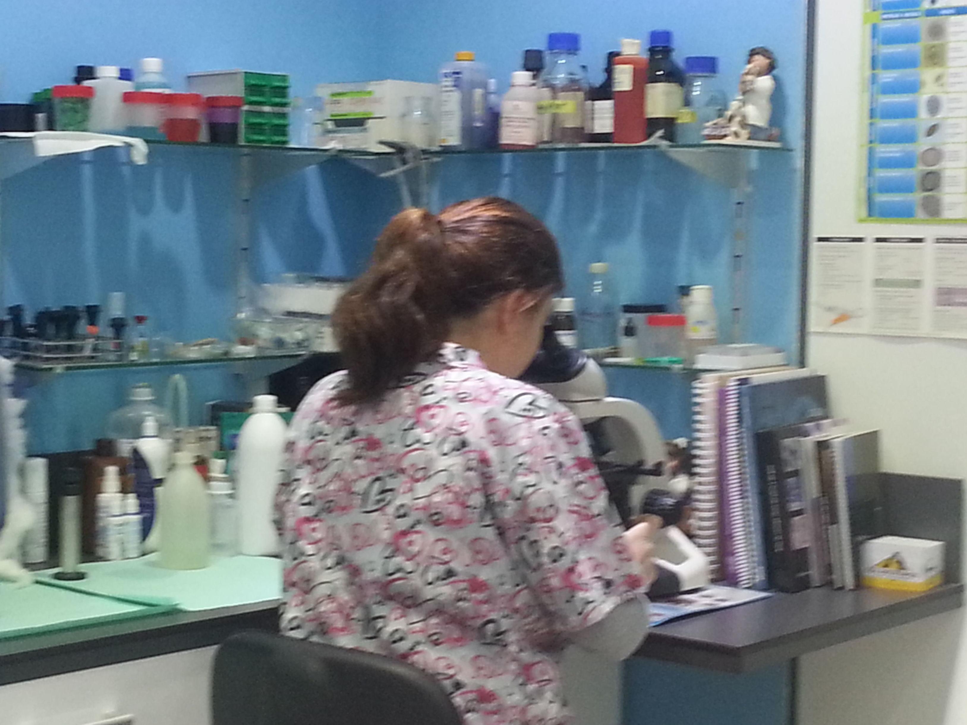 Análisis de laboratorio: Servicios de Clínica Veterinaria Ricardo Díez Reyero