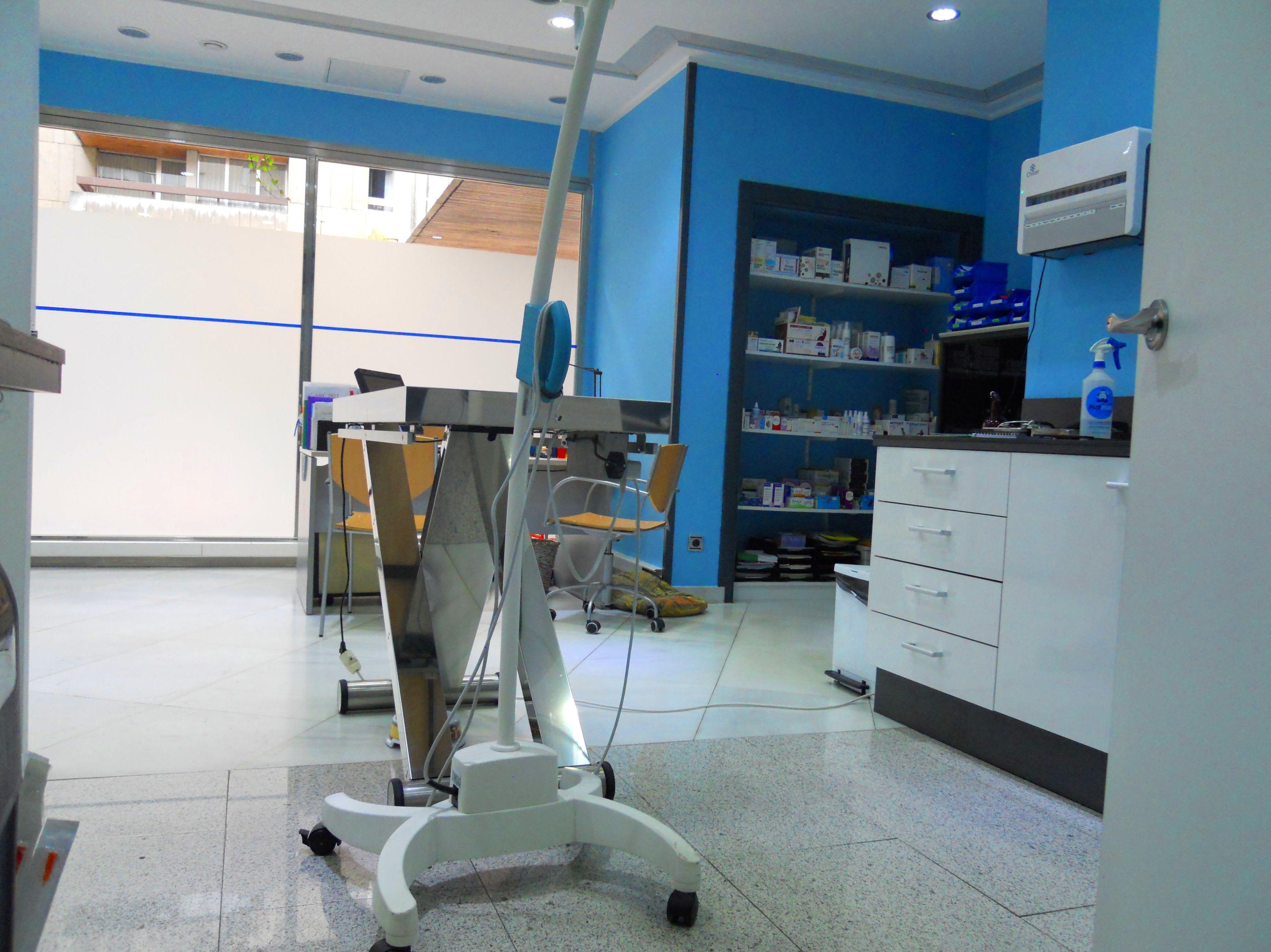 Foto 6 de Veterinarios en León | Clínica Veterinaria Ricardo Díez Reyero