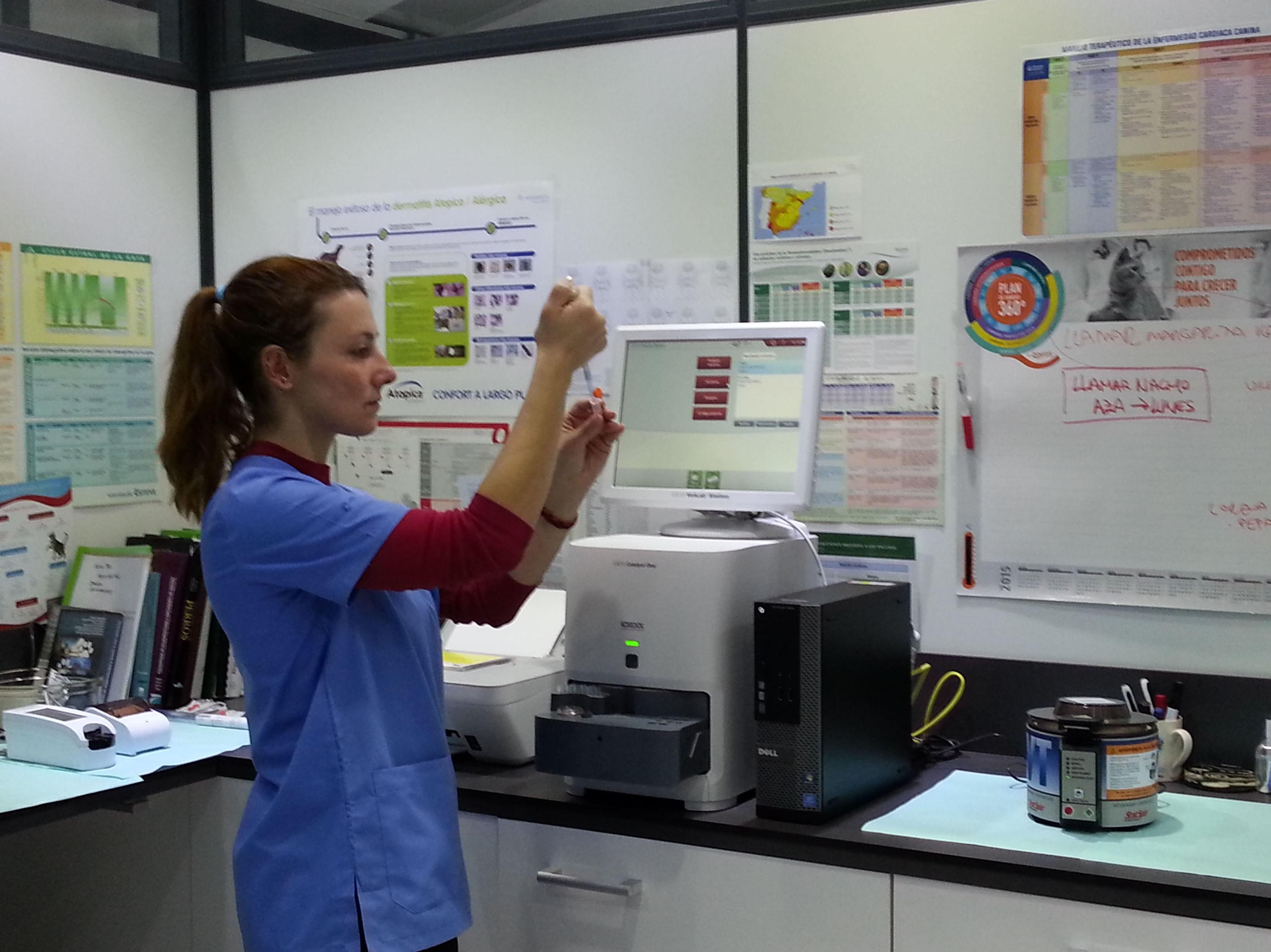 Foto 12 de Veterinarios en León | Clínica Veterinaria Ricardo Díez Reyero