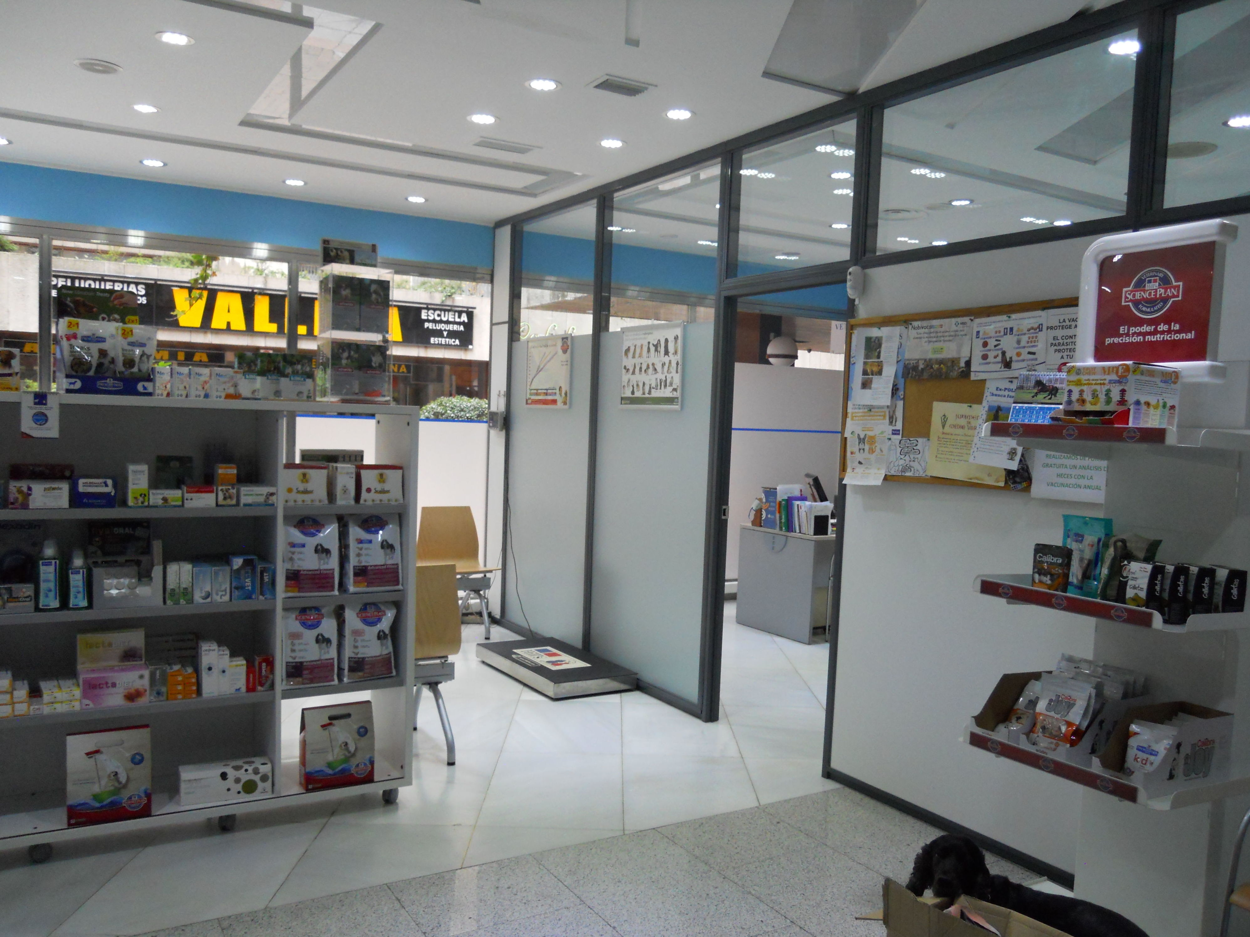 Foto 7 de Veterinarios en León | Clínica Veterinaria Ricardo Díez Reyero