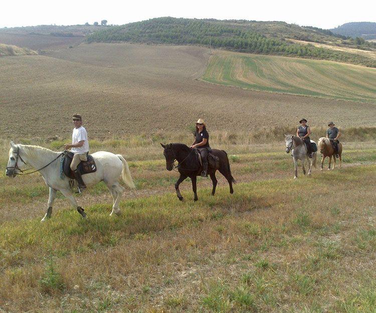 Terapia con caballos en Aranguren, Navarra