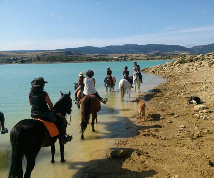 Excursiones con caballos en Aranguren, Navarra