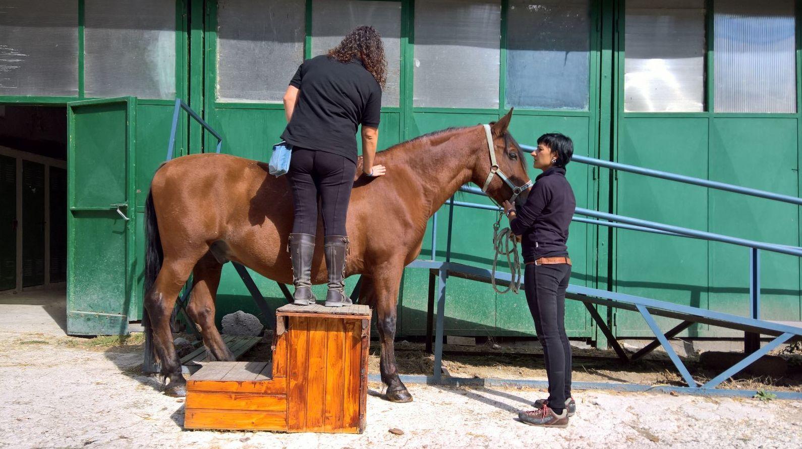 Foto 9 de Centro de equitación y equinoterapia en Labiano | Centro de Equitación y Equinoterapia Biki Blasco