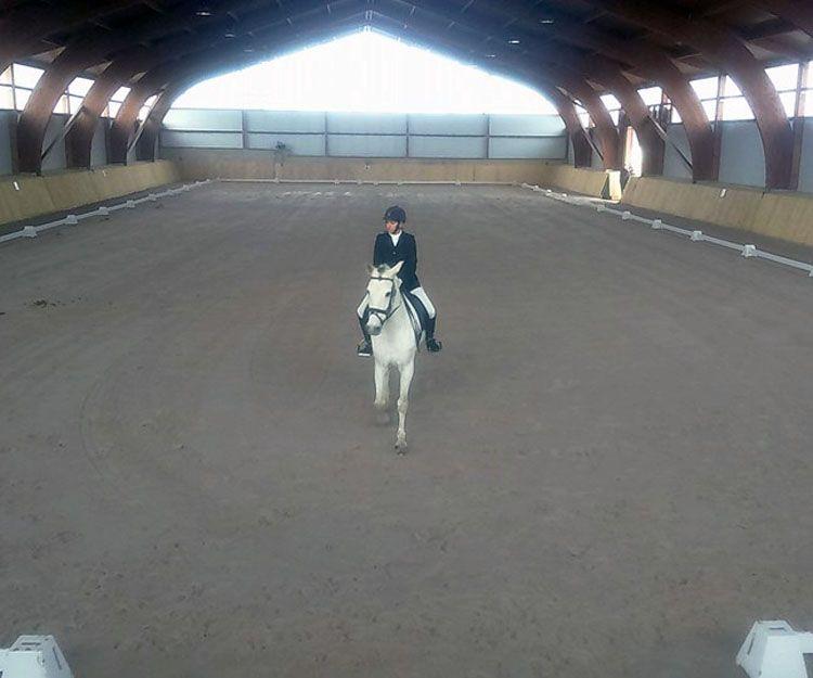 Actividades con caballos en Aranguren, Navarra