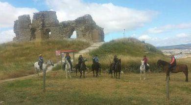 Foto 18 de Centro de equitación y equinoterapia en Labiano | Centro de Equitación y Equinoterapia Biki Blasco