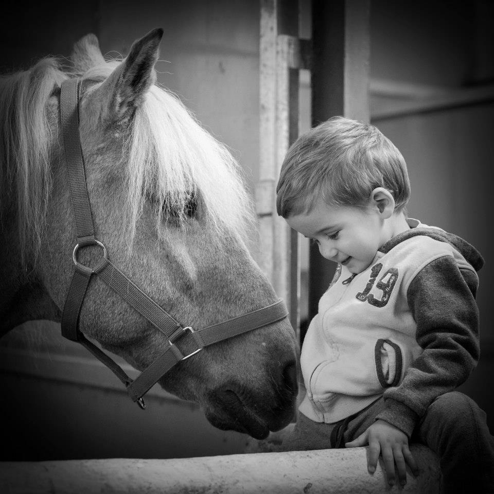 Equitación adaptada: Servicios de Centro de Equitación y Equinoterapia Biki Blasco