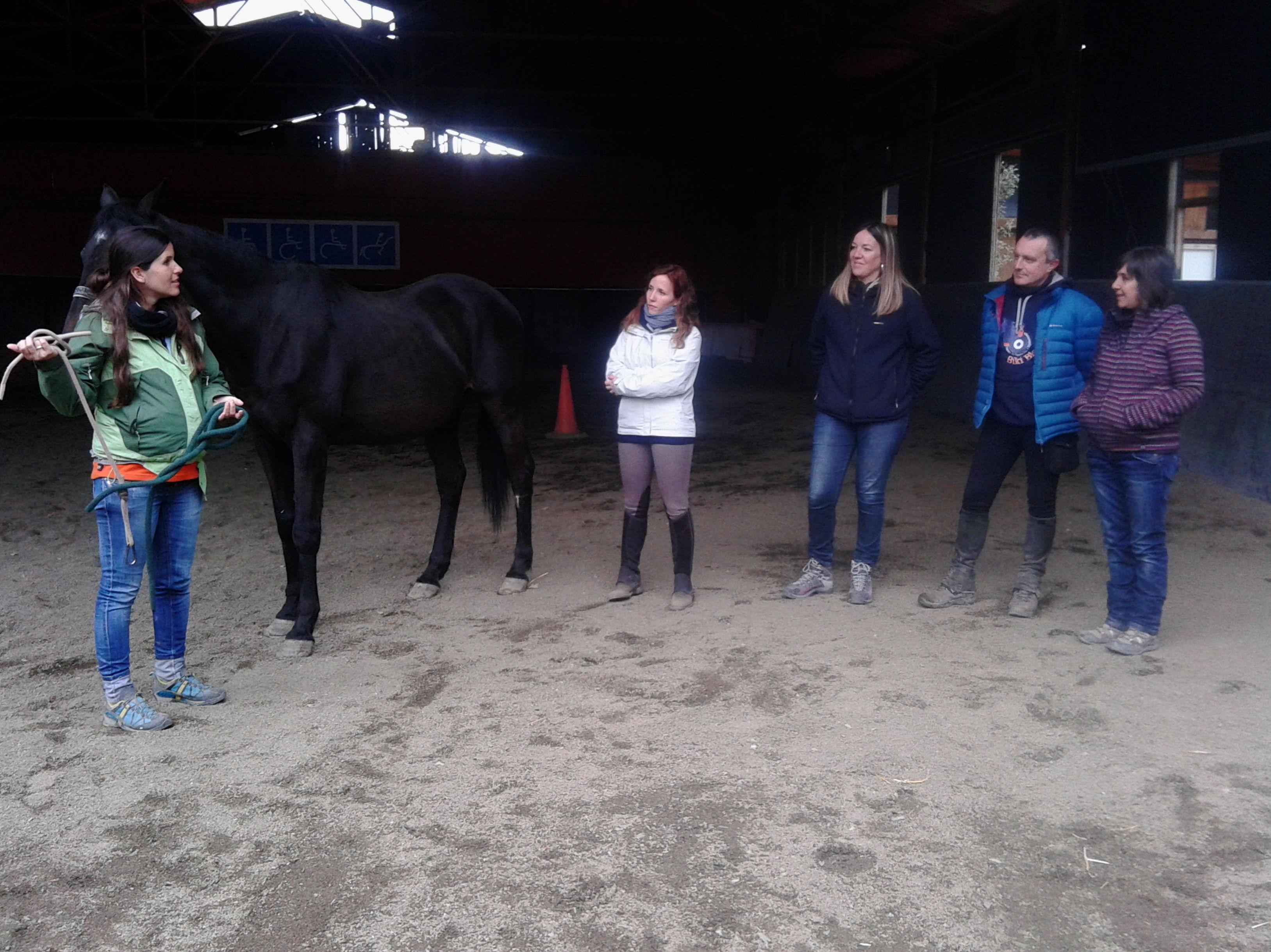 Foto 11 de Centro de equitación y equinoterapia en Labiano | Centro de Equitación y Equinoterapia Biki Blasco