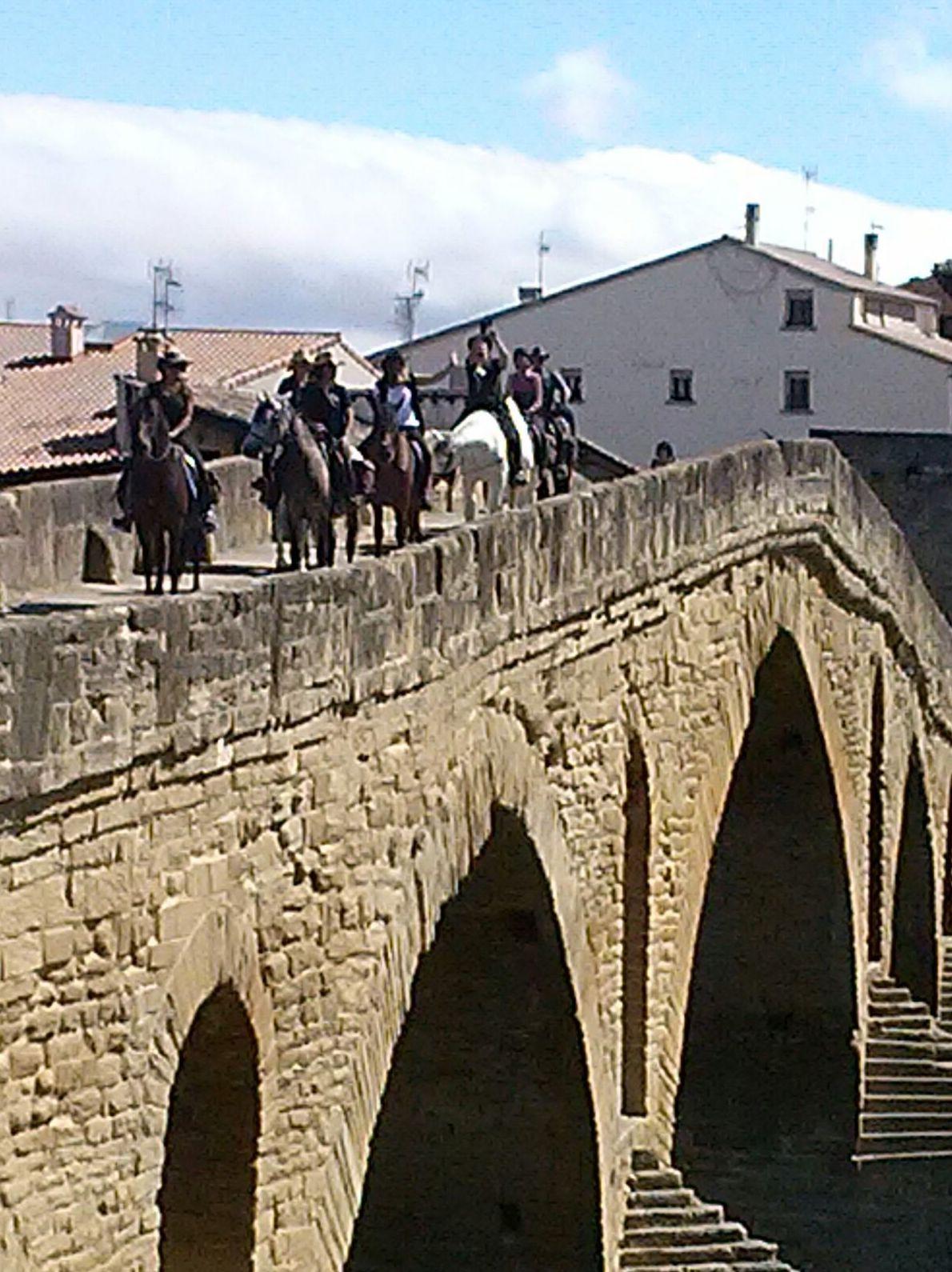 Foto 16 de Centro de equitación y equinoterapia en Labiano | Centro de Equitación y Equinoterapia Biki Blasco