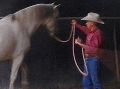 Foto 12 de Centro de equitación y equinoterapia en Labiano | Centro de Equitación y Equinoterapia Biki Blasco
