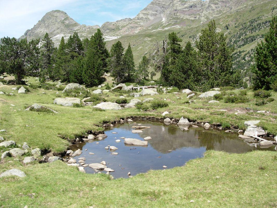 Turismo rural en el Pirineo Aragonés