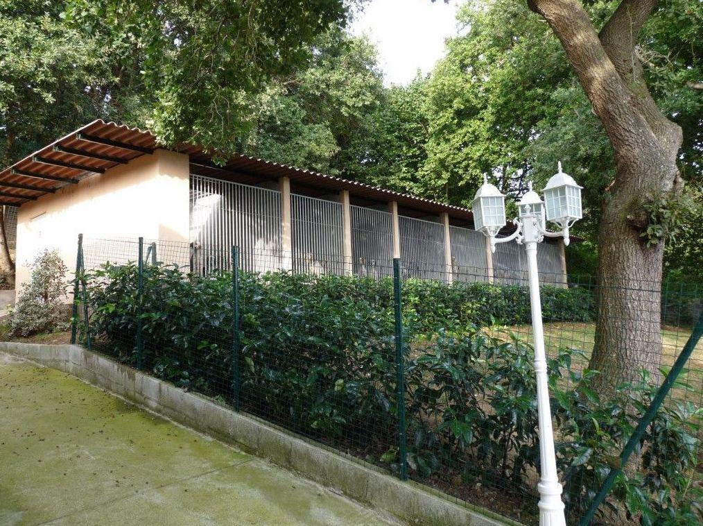 Residencia canina en Vizcaya