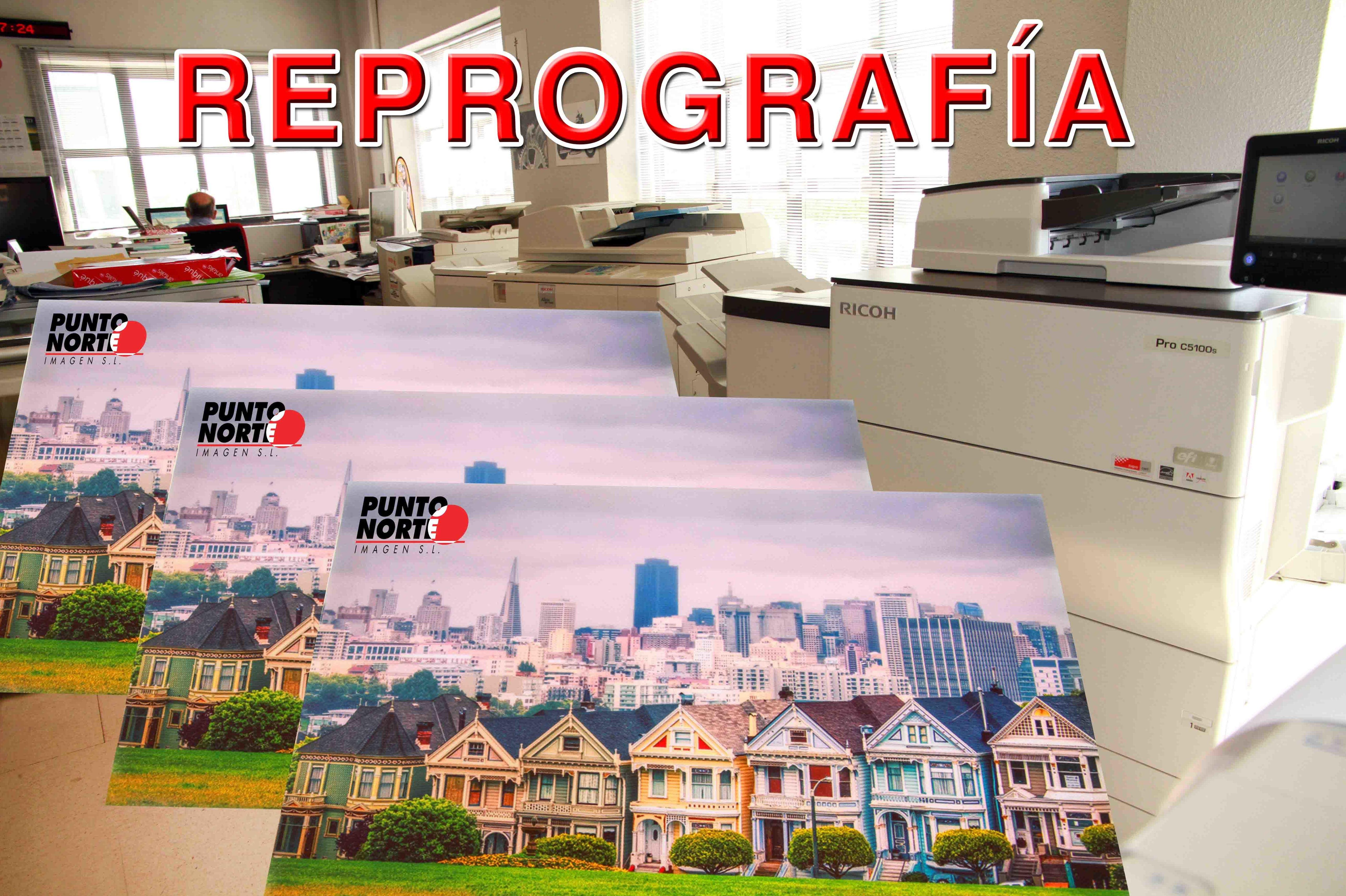 Reprografía / Copistería: Servicios de Punto Norte Imagen, S.L.