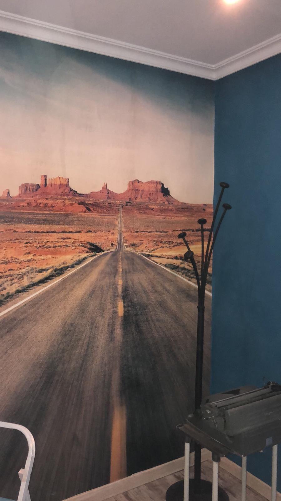 Foto 57 de Pintores en    Pinturas y Decoración SierraMadrid