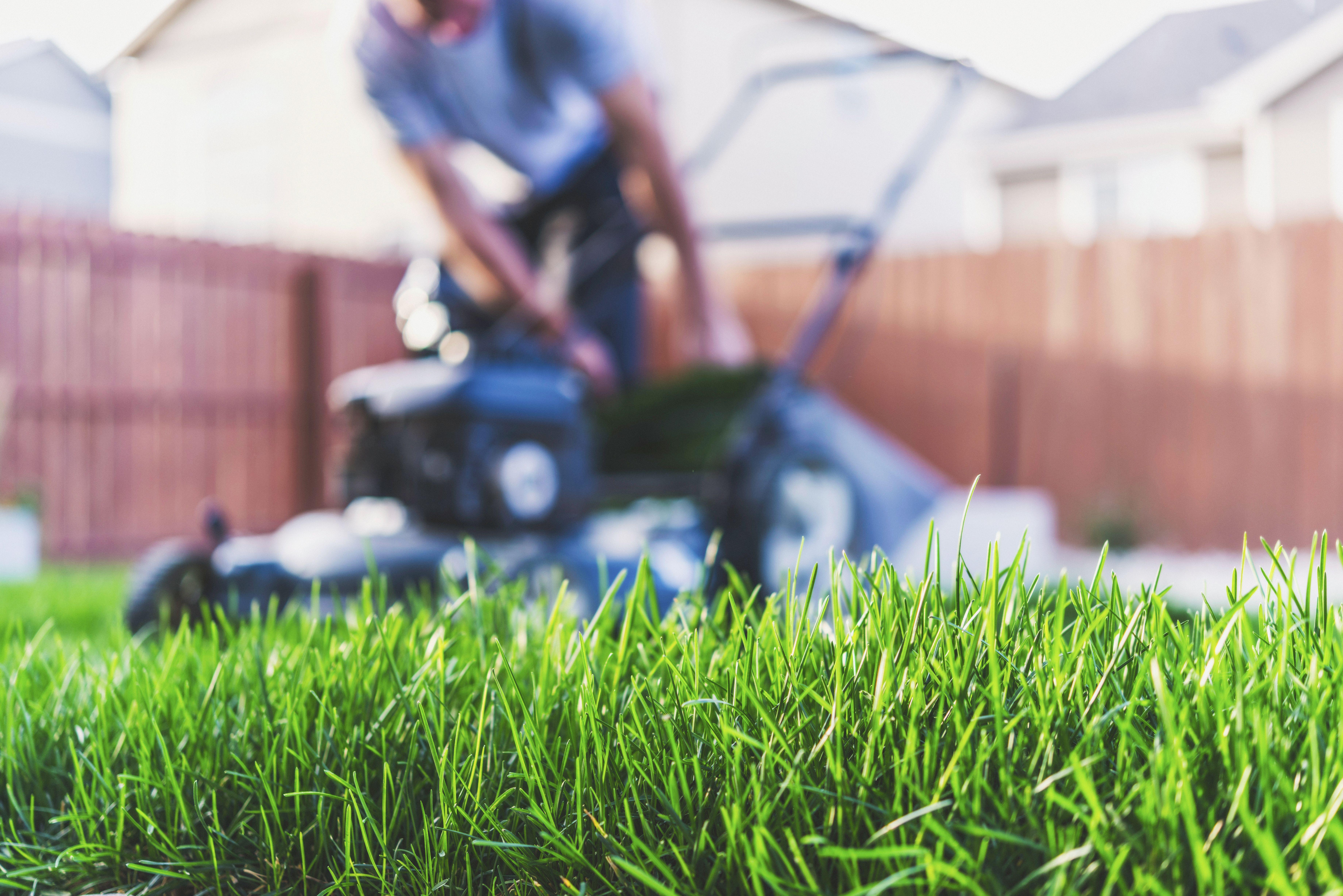 Mantenimiento integral de jardines: Servicios de Futurgrass