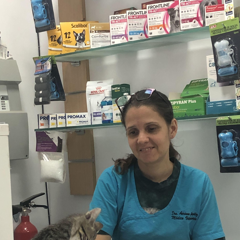Foto 26 de Especialistas en perros y gatos en Montcada i Reixac | Huellas Centro Veterinario