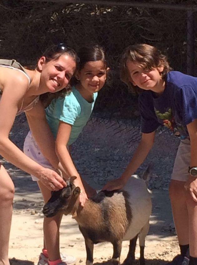 Foto 5 de Especialistas en perros y gatos en Montcada i Reixac | Huellas Centro Veterinario