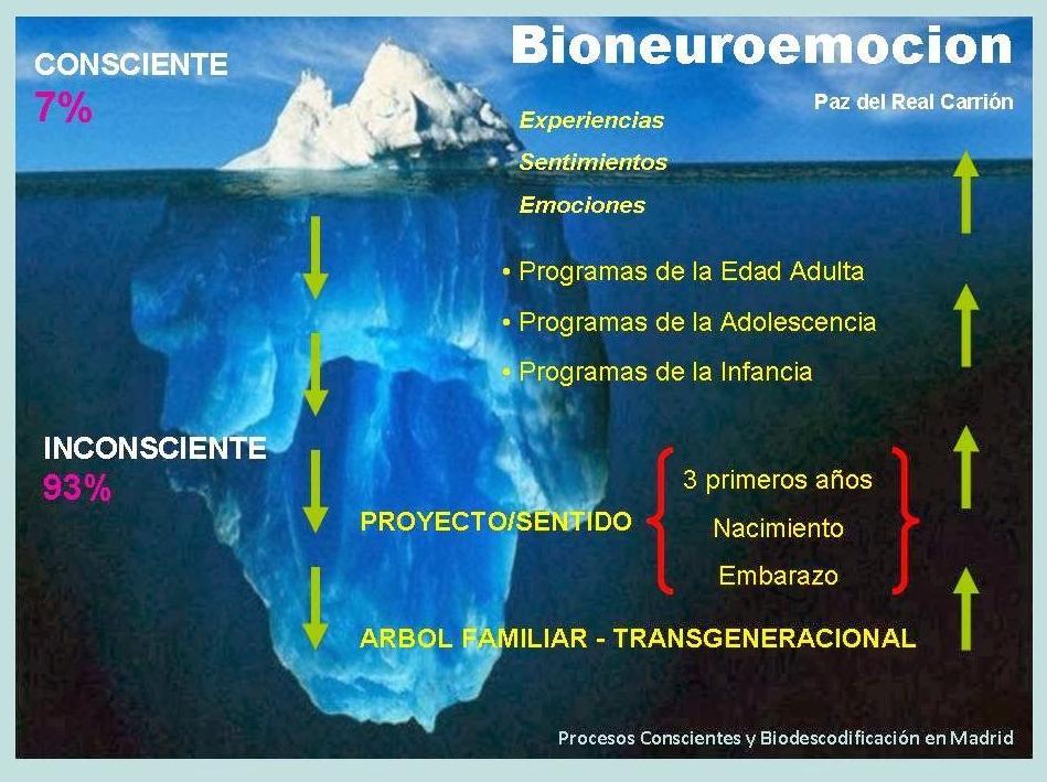 Bioneuroemoción: Servicios de Centre de Teràpies Naturals Kines