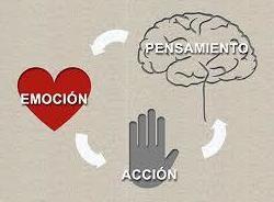 Terapia Cognitivo conductual: Psicología / Psiquiatría de Instituto Psiquiátrico Ipsias