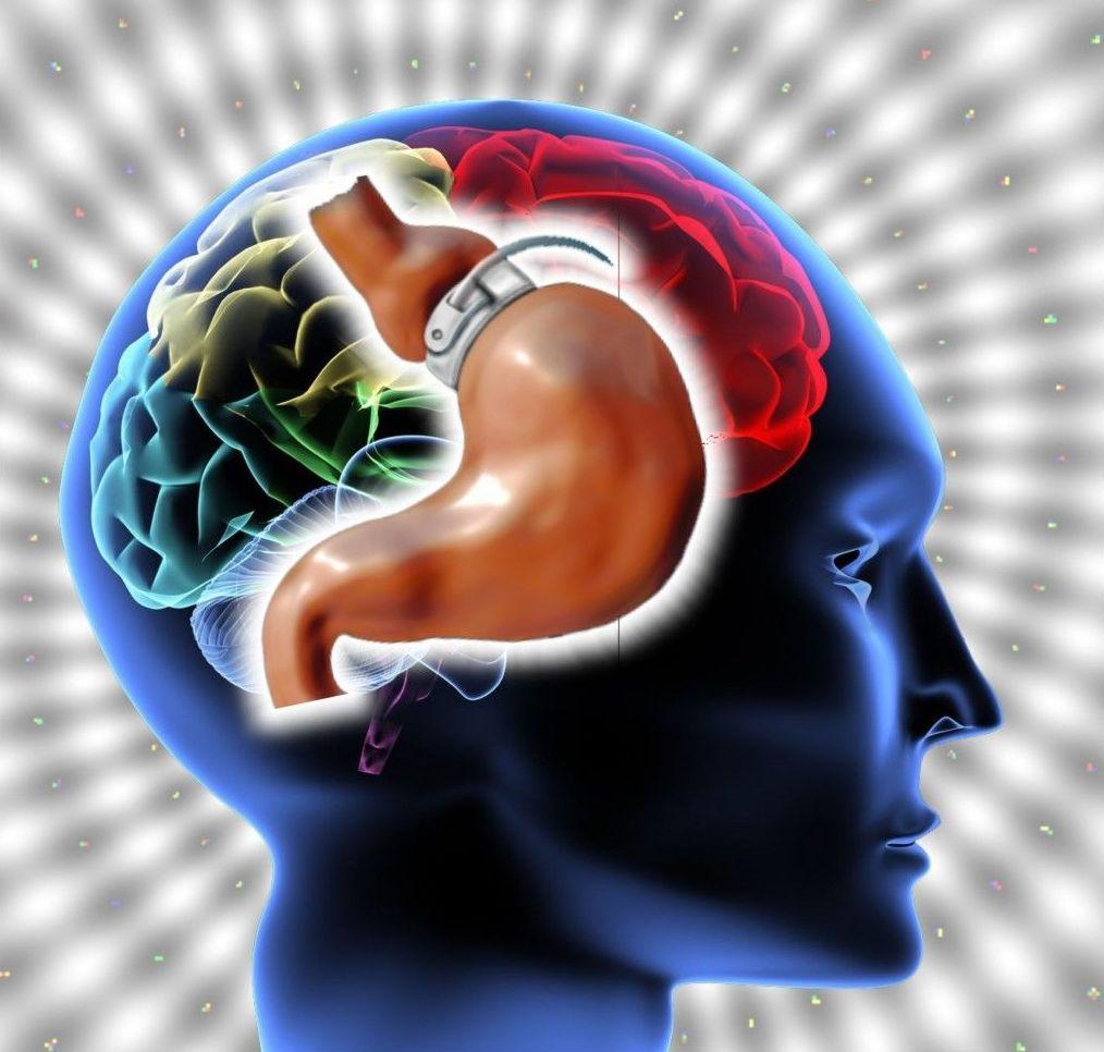 Evaluación y Tratamiento de la obesidad: Psicología / Psiquiatría de Instituto Psiquiátrico Ipsias