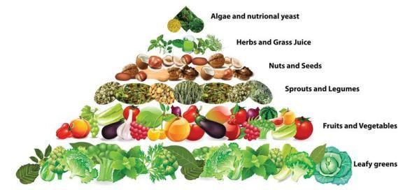 Coaching Nutricional: Servicios de Shambhala Salud y Bienestar