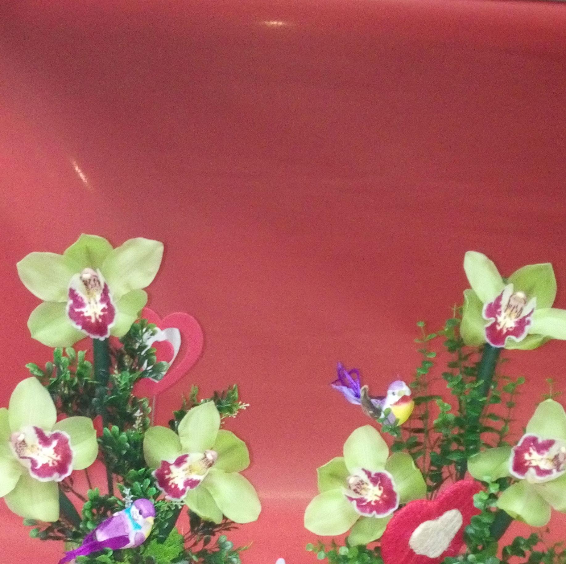 Interflora: Productos de Floristería La Salud