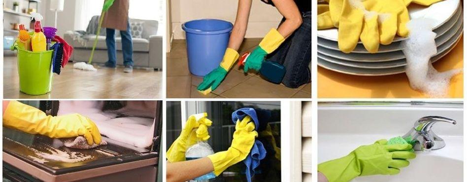 Servicios de limpieza: Servicios de FastControl, tu respuesta profesional.