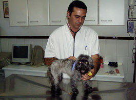 Dr. Jorge Patricio