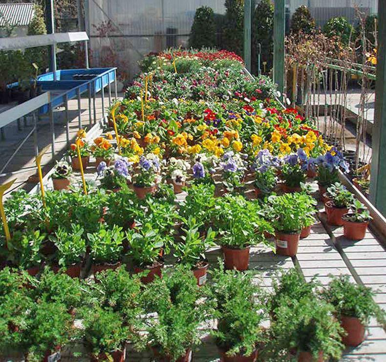 Catálogo de jardinería