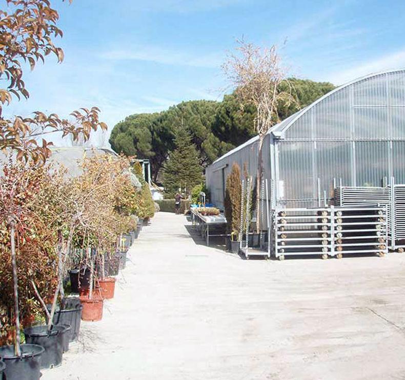 Empresa de jardinería en Madrid