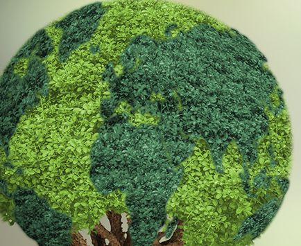 Ozonoterapia: Especialidades y Servicios de Centre Mèdic Meisa